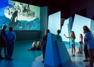 Image shows people using augmented reality screen to interact with killer whales at Nobbies Ocean Discovery Centre Phillip Island Nature Parks