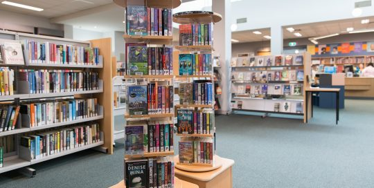 Interior of Hampton Park Library showing shelving with books